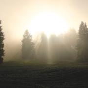 Healing from Grief, Karmik Channels Blogs, Mediumship