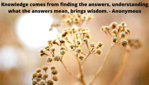 Knowledge Vs. Wisdom, Holistic Living, Jill Spirithorse, Resource List