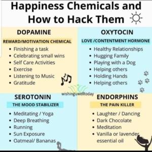 Brain Chemicals, Holistic Living