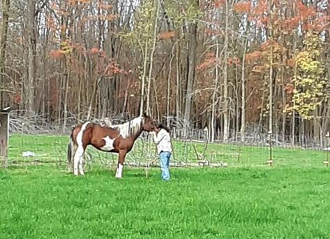 Jill Spirithorse, Magi, Horses